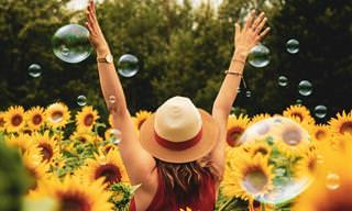 א'-ב' של האושר – כל מה שצריך כדי להיות מאושר