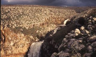5 מסלולי טיול ברמת הגולן ועוד מקום אחד מסתורי ביותר