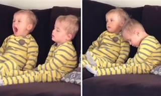 מצחיק לראות איך צמד הפעוטות פשוט נרדם אט אט מול הטלוויזיה...