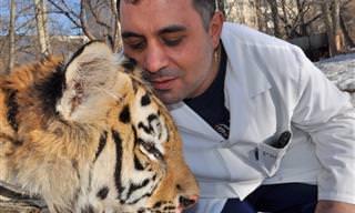 """סיפורו של """"ד""""ר דוליטל"""" הרוסי - קארן דלאקיאן, שהציל אינספור בעלי חיים"""