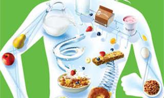 על מסך הטלוויזיה - תחקיר מעניין על תזונה ובריאות