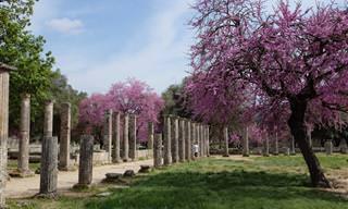 9 מקומות שיפגישו אתכם עם יוון שבין האיים