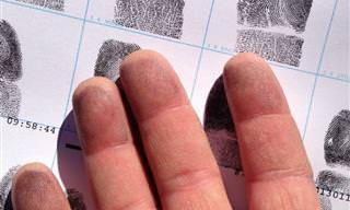11 דפוסים של טביעות אצבע שיעזרו לנתח את האישיות שלכם