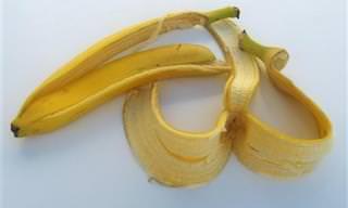 9 שאריות מזון עם שימושים מפתיעים