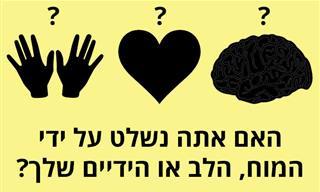 האם אתה נשלט על ידי המוח, הלב או הידיים שלך?
