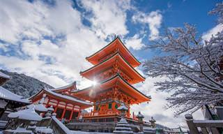 20 תמונות נפלאות שמציגות את היופי של יפן