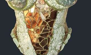 חזיות ומחוכים מדהימים ומיוחדיםהחזיות והמחוכים הבאים הם עבודתה של האמנית לורה אן ג'ייקובס, שיצרה קולקציה מגניבה של בגדים תחתונים העשויים מצדפים וקרניים של צבאים.