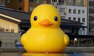 פסלי ענק של ברווזי אמבטיה בעולם