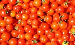 הנחיות לאחסון פירות וירקות