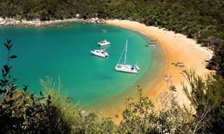 הפארק הקטן הזה הוא אחד מהמקומות היפים ביותר בניו זילנד...