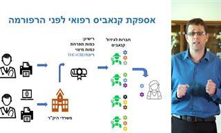 צפו בהסבר מרתק של רופא ישראלי על קנאביס והטיפול במחלות מעי
