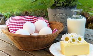 6 הטיפים המלמדים על צריכת חלבון בצורה נכונה