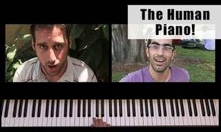 פסנתר ישראלי אנושי - פרויקט מדליק!