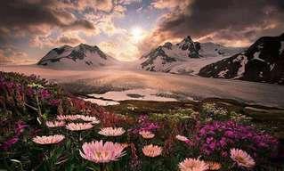 נופיה המושלגים של אלסקה