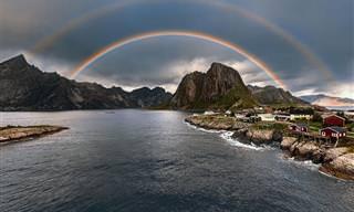 20 תמונות טבע מדהימות של מקומות וחיות בעולם