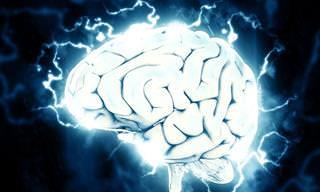 הרצאה מרתקת: כך תצמיחו תאי עצב חדשים במוח