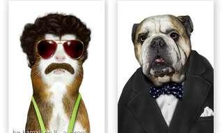 חתולים וכלבים הופכים למפורסמים - היסטרי!!