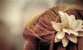 מדריך לטיפול בבעיות שיער וקרקפת נפוצות עם שמן עץ התה