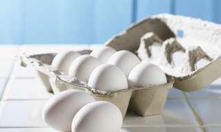 חלבון: כל מה שאתם צריכים לדעת