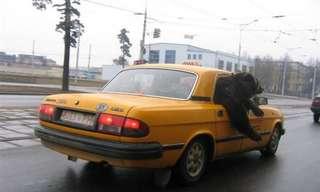 רק ברוסיה - לקט תמונות מצחיקות!