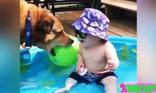 סרטון מקסים שכולו צחוק טהור של תינוקות