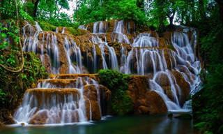 15 תמונות יפהפיות שמראות את עולם המים במלוא הדרו