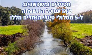 5 המלצות לטיולי נחלים בישראל