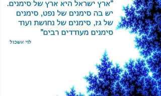 ציטוטים כחול לבן של גדולי האומה