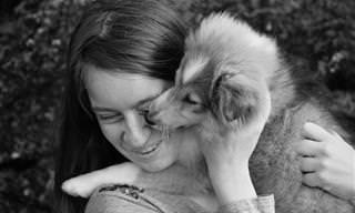 10 סימנים מובהקים לכך שהכלב שלכם אוהב אתכם