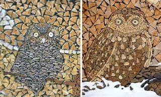 יצירות אמנות עשויות מבולי עץ