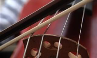 היתרונות המפתיעים של המוזיקה הקלאסית על הגוף והנפש