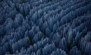 יער האבן במדגסקר - נופים עוצרי נשימה!!
