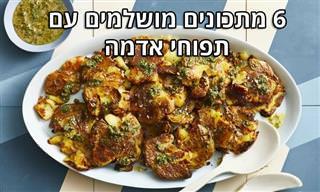 6 מתכונים נהדרים עם תפוחי אדמה וקמח תפוחי אדמה
