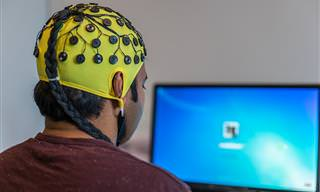 12 מבחני אישיות שיבדקו את המוח האינטליגנציה והאישיות שלכם
