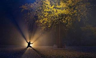 25 תמונות מדהימות מתחרות התמונות של סוני