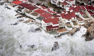 """16 תמונות קורעות לב הממחישות את נזקי הסופה """"אירמה"""""""