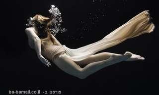 אומנות מתחת למים - מרהיב!