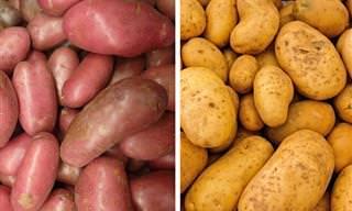 ההבדלים שבין 8 ירקות שמגיעים בצבעים שונים