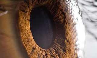 תצלומי תקריב של העין האנושית - מדהים!