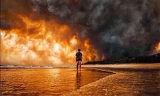 17 תמונות שממחישות את עוצמת השריפות באוסטרליה