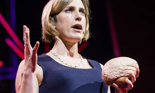 כיצד עובד המוח של מתבגר?