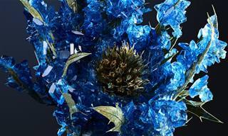 פרחי הקריסטלים של אילסון מוואט