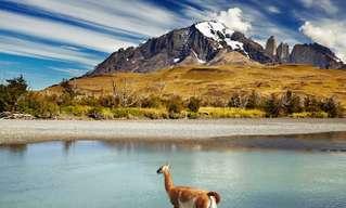 עונות השנה בשמורת טורס דל פיינה בצ'ילה