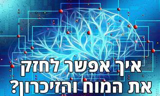 מהן השפעות הגיל על המוח והזיכרון, ואיך ניתן למנוע אותן?