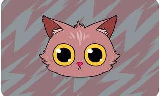 המדריך המלא לשפת הגוף של החתולים