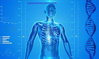 עד כמה אתם מכירים את הגוף שלכם?