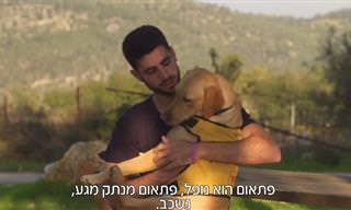 מרגש: צפו בסיפור מדהים של חייל הלום קרב וכלבת התמיכה שלו