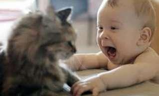 ילדים קטנים ותמימים - אוסף תמונות מצחיקות