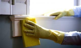 16 דברים שיש בכל בית ואפשר לנקות איתם כמעט הכל