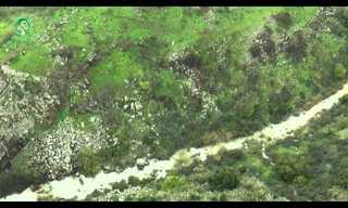 טיול אווירי מעל שפע המים שבצפון